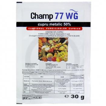 CHAMP 77 WG