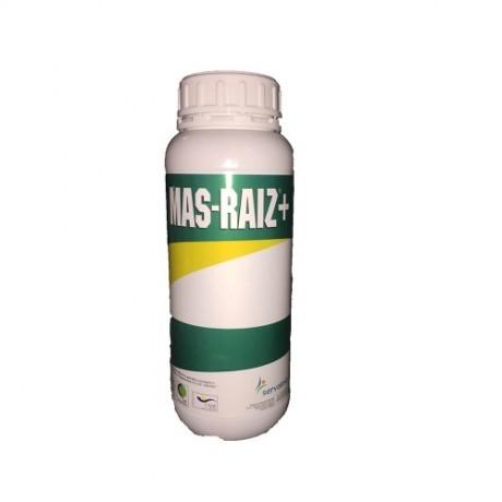 MAS-RAIZ +